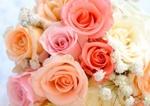 棺の中は花で満開となり